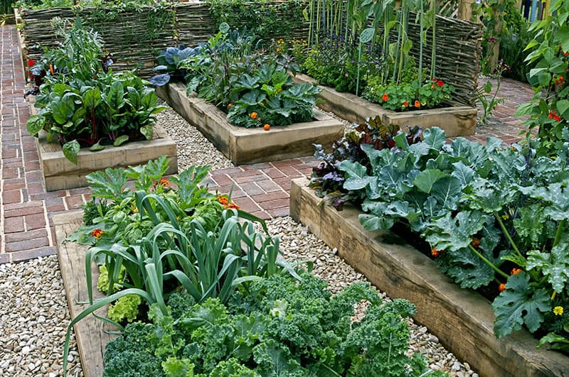 Gardening Ideas For Small Gardens