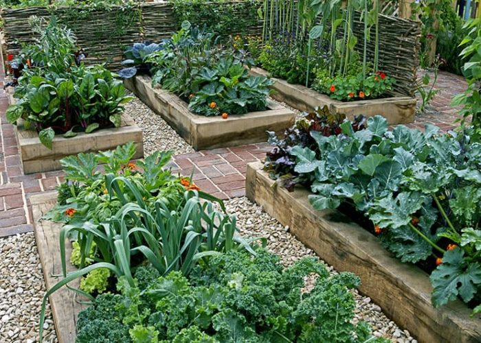 self-sufficient garden