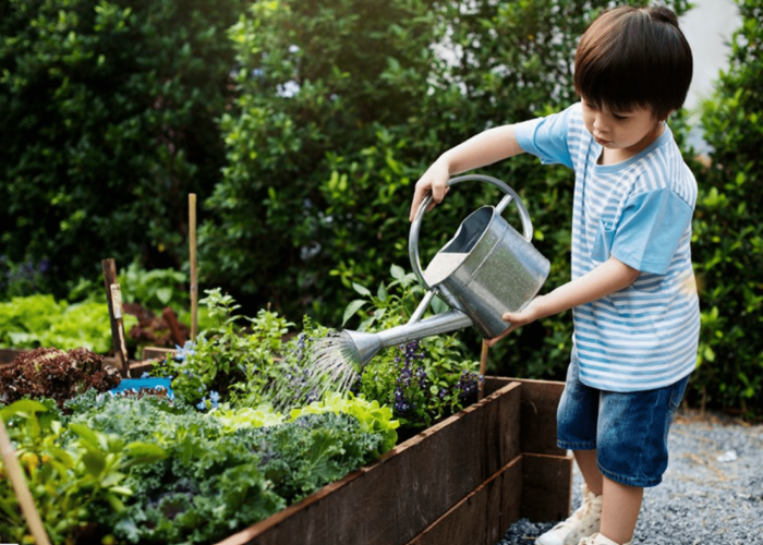 9 Easy Gardening Tips for Beginners
