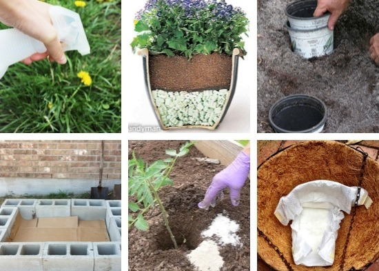 9 are Clever Gardening Tips And Ideas